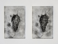 Cocoon Diptych